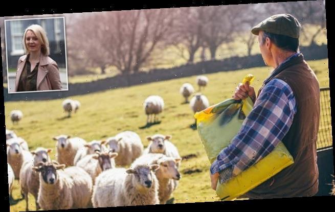 Tories rebel as Trade Secretary Liz Truss 'plots to betray UK farmers'