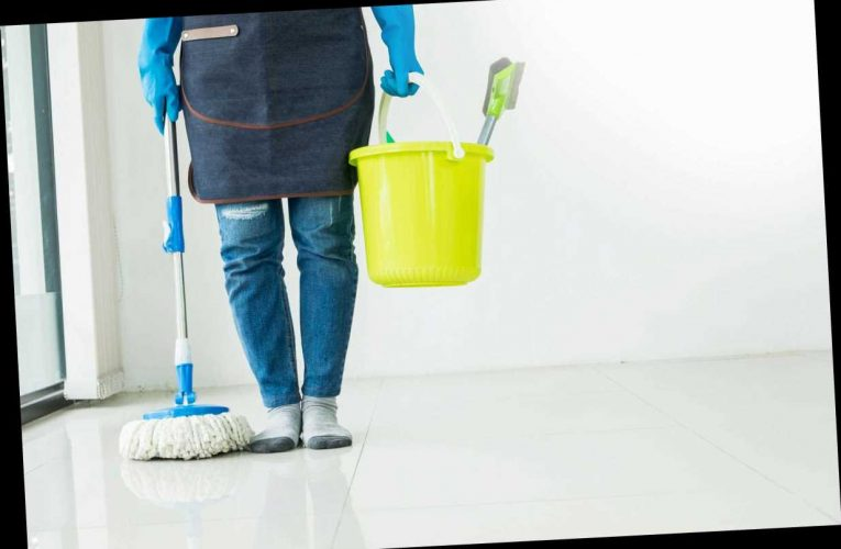 Can my cleaner come back to work? – The Sun