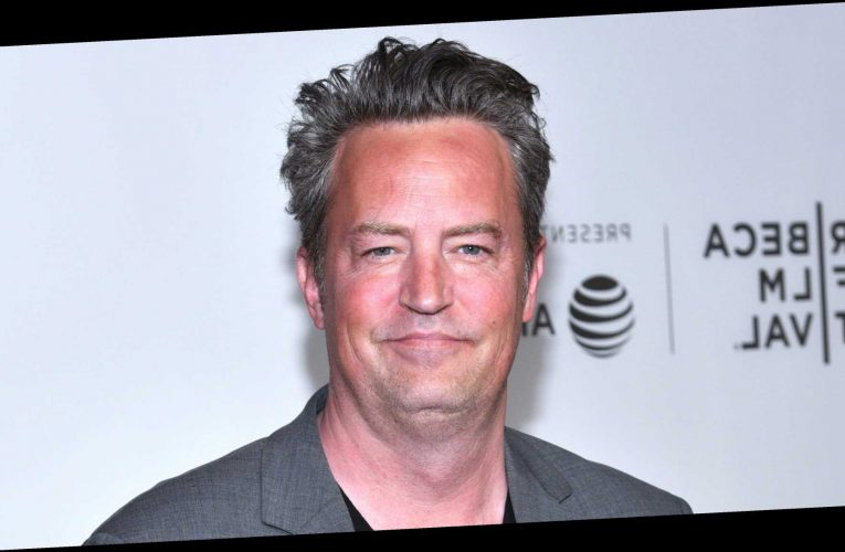 Matthew Perry Is 'Getting Back Into Online Dating' After Molly Hurwitz Split