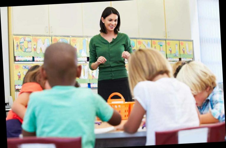 Transfer your lockdown home-schooling skills by joining a teacher training scheme – The Sun