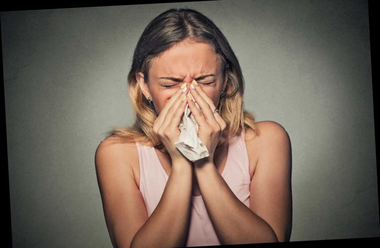 Having a common cold can help fight coronavirus – raising hopes some have degree of protection – The Sun