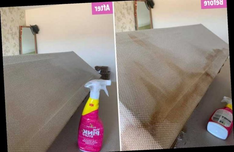 Mum gets rid of massive coffee stain on her bed using £1.50 cleaning spray & it only took a few minutes