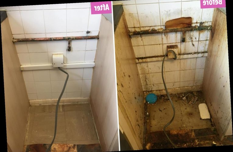 Woman cleans behind her cooker for first time in FIVE YEARS years and gets filthy area sparkling using 89p product