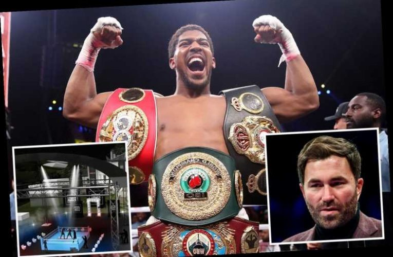 Anthony Joshua reckons Brit boxers are dodging coronavirus comeback with champ open to fighting in Hearn's back garden – The Sun