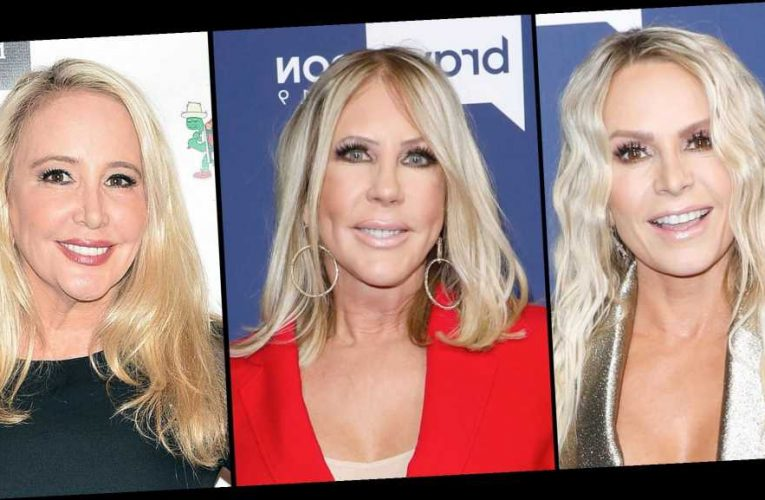 RHOC's Tamra and Vicki Detail Their Last Conversation With Shannon
