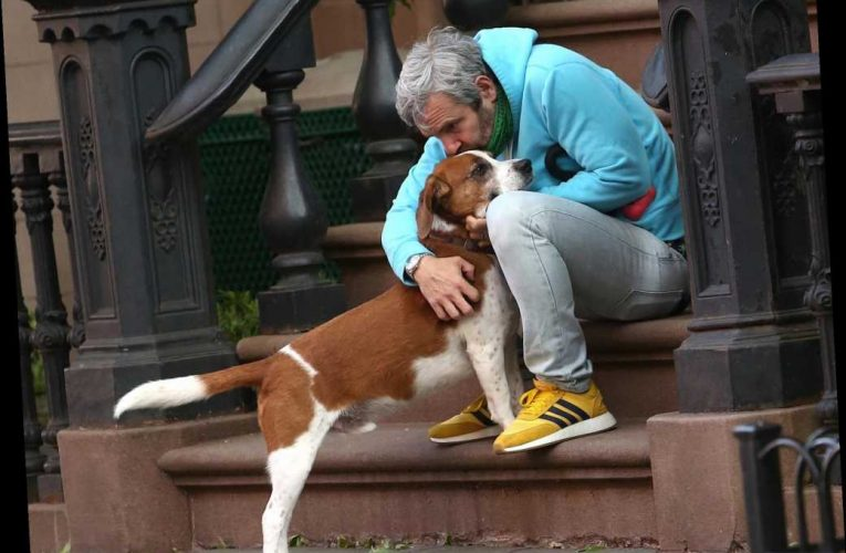 Andy Cohen reveals he had to give up his rescue pup Wacha