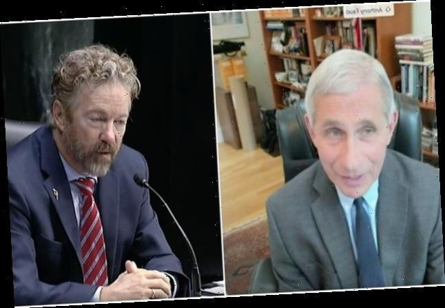Anthony Fauci And Rand Paul Had A Tense Exchange During A Coronavirus Hearing