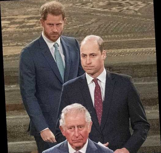 Katie Nicholl: Prince William & Harry have reconnected during the lockdown