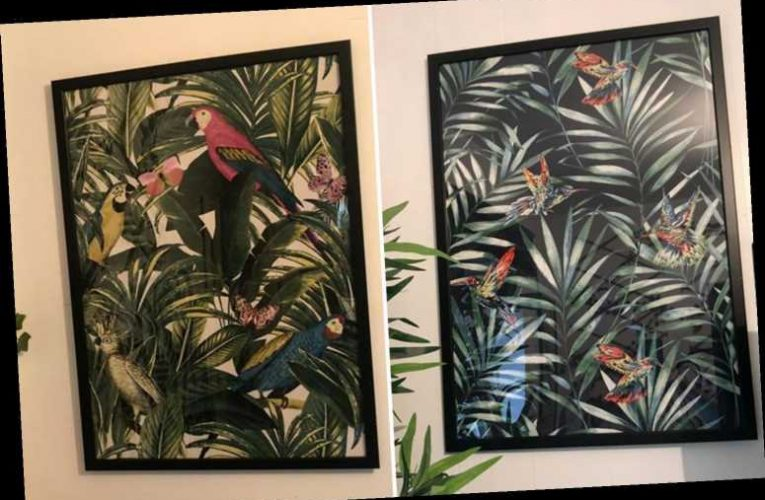 Mums who can't afford fancy art are framing free wallpaper samples from Wilko's and B&Q