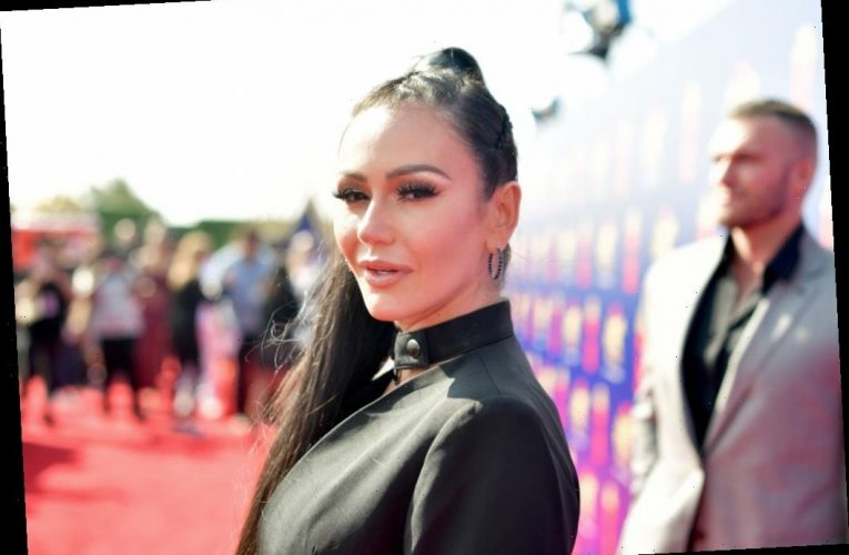 Jenni 'JWoww' Farley Wanted This Artistic Career Before Joining the Cast of 'Jersey Shore'