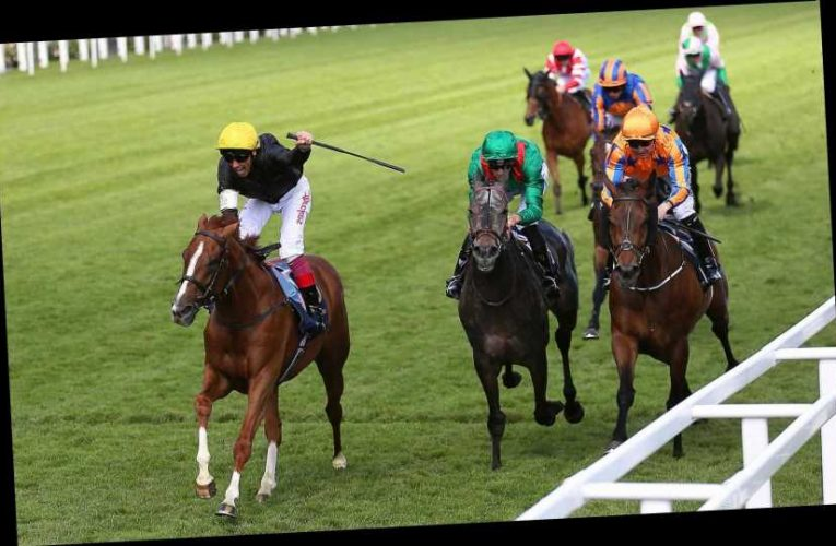 3.35 Royal Ascot racecard and tips: Who should I bet on in the Gold Cup?