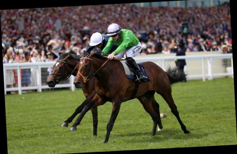 3.00 Royal Ascot racecard and tips: Who should I bet on in the Chesham Stakes?