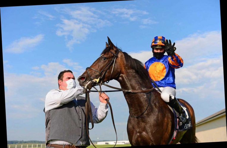Curragh Report: Aidan O'Brien does it again as Peaceful backs up the talking with cosy Irish 1000 Guineas win