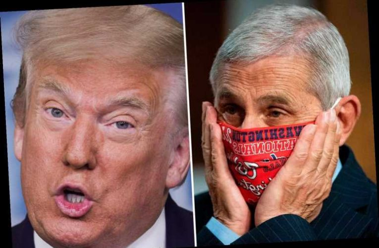 Trump slams Dr Fauci for saying America is 'knee-deep' in first COVID wave and disagrees with his advice – The Sun