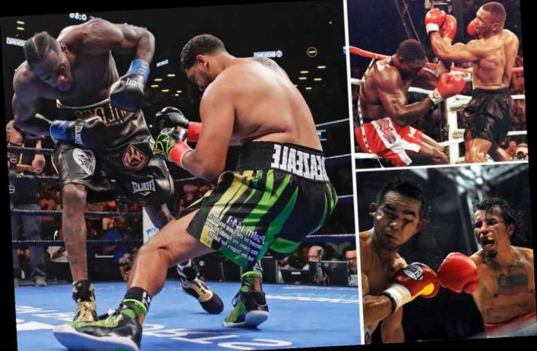 The biggest knockout fighters in boxing history, including Deontay Wilder to big punching legend Earnie Shavers – The Sun