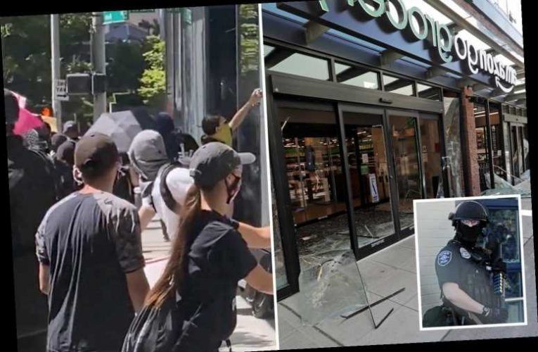 Seattle rioters smash up stores, loot buildings and attack police precinct in wave of violence during anti-cop march