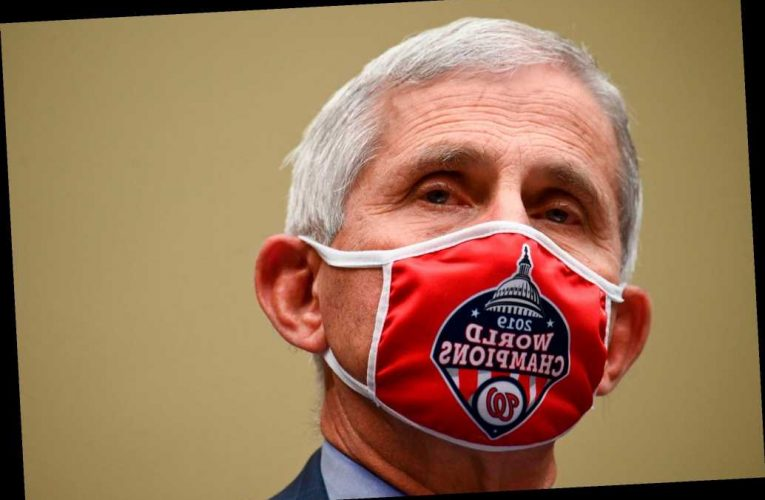 Anthony Fauci tells House panel that COVID-19 pandemic isn't going away soon