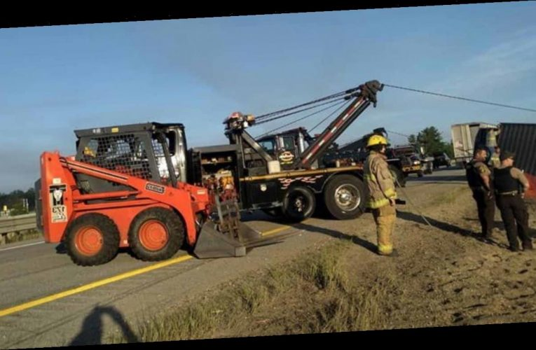 Loose cows block Michigan highway after livestock rig crash
