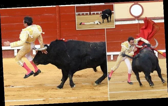 Matador is gored in the buttocks after stabbing bull