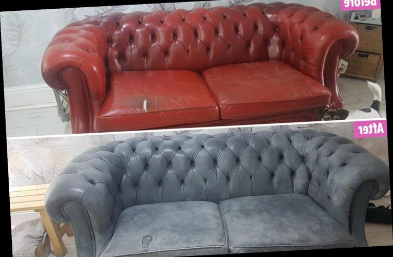 Woman who couldn't afford her dream Chesterfield sofa bagged an old one for free & made it look brand new by painting it – The Sun