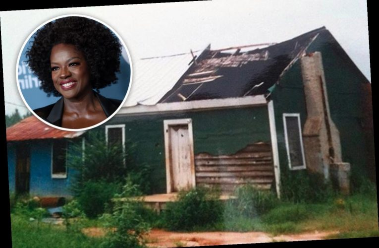 Did Viola Davis buy St Matthews plantation and was she born there?