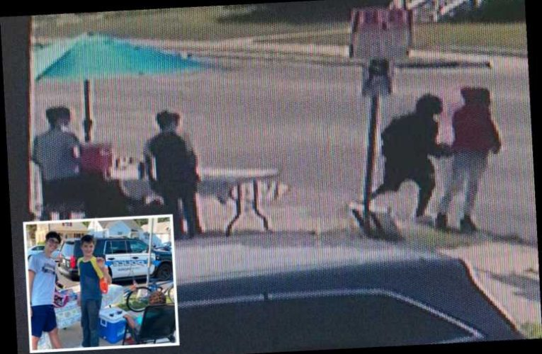 Boys, 13, running a lemonade stand are robbed at GUNPOINT of their $30 profit by older teens