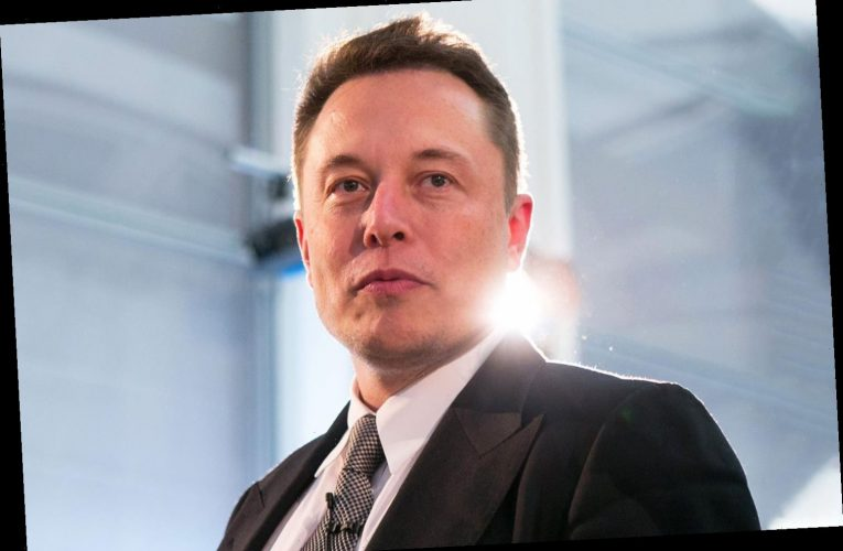 Elon Musk slams 'entitled' and 'complacent' US citizens while praising 'smart' and 'hard-working' Chinese people