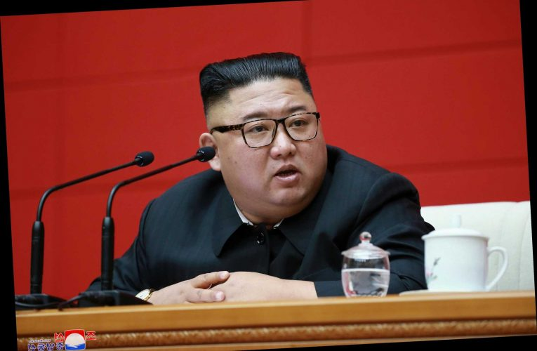 Kim Jong-un orders public executions of six people by firing squad over vice ring that sold sex with top uni students