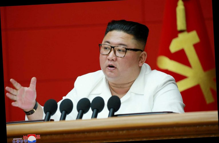 Is Kim Jong-un in a coma and will his sister Kim Yo-jong take over if he dies?