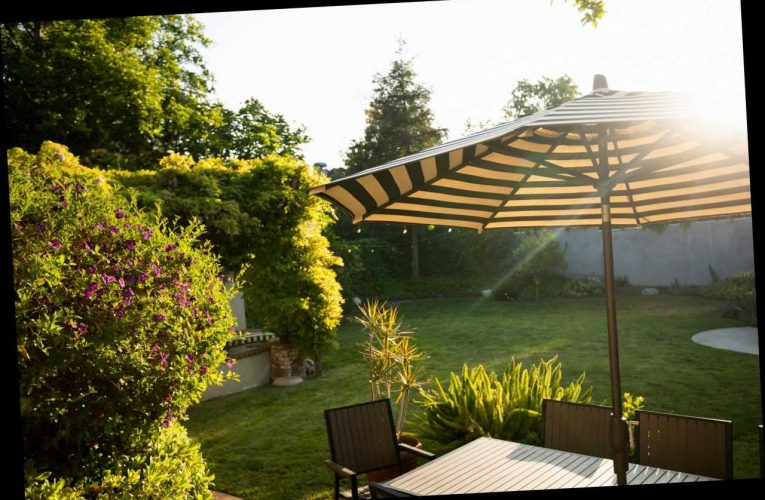 7 Best Patio & Garden Parasols | The Sun UK