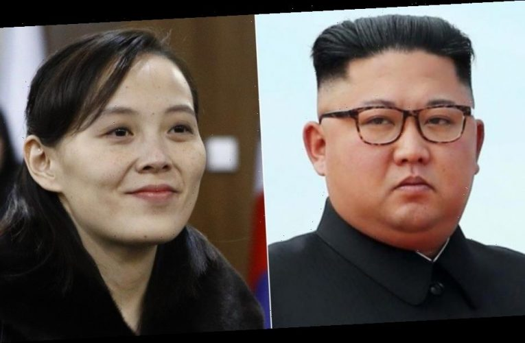Kim Jong Un is in a coma as his sister takes charge, according to reports