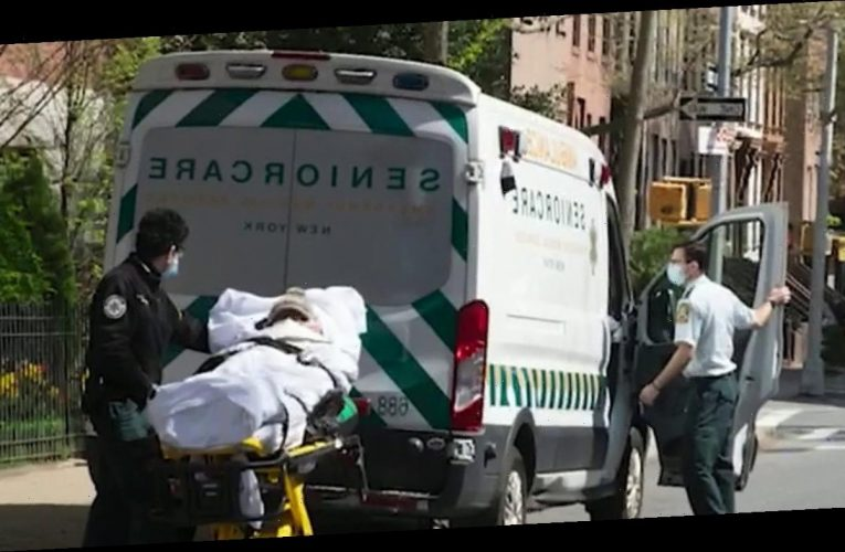 New York's true nursing home coronavirus death toll cloaked in secrecy