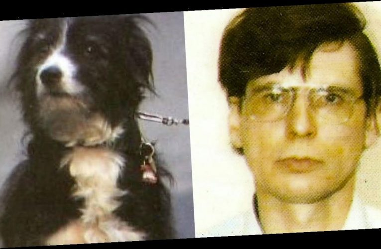 Dennis Nilsen believed his psychic dog Bleep 'knew he was a serial killer'