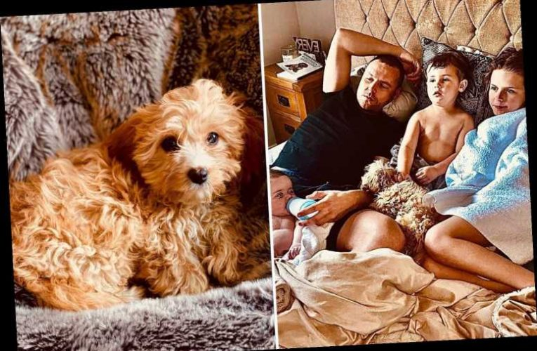 Emmerdale star Danny Miller's family home has a huge bed big enough for three kids AND the dog