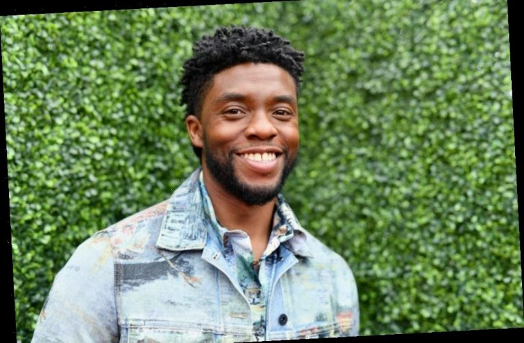 Chadwick Boseman Donated Some of His Salary From '21 Bridges' So Sienna Miller Could Have Equal Pay
