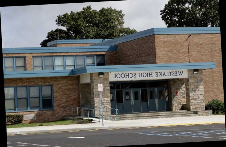 Westchester school under fire for cartoon comparing cops to KKK, slave owners