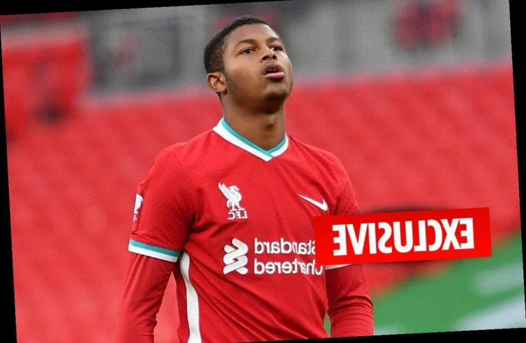 Liverpool starlet Rhian Brewster wants £20m Crystal Palace transfer but Reds insist on buy-back clause