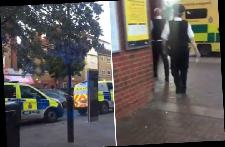 Police swarm West Ham tube station after person stabbed 'on Jubilee Line platform'