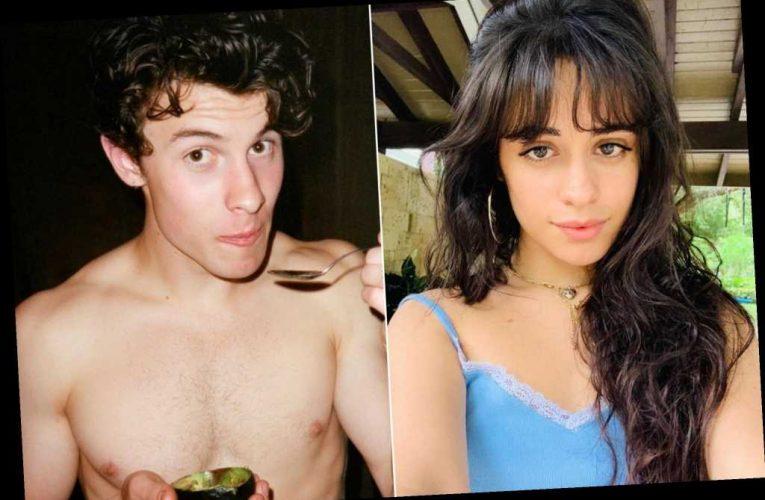 Camila Cabello shuts down Shawn Mendes breakup rumors
