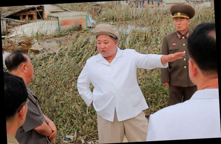 Kim Jong-un visits area devastated by Typhoon Maysak as he vows to 'gravely punish' his minions over storm casualties