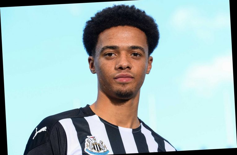 Jamal Lewis completes £15m Newcastle transfer from Norwich as he becomes third signing in just two days
