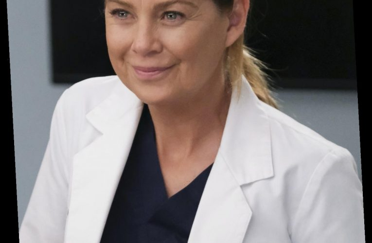 Ellen Pompeo's New Favorite 'Grey's' Couple Teases A Budding Season 17 Romance