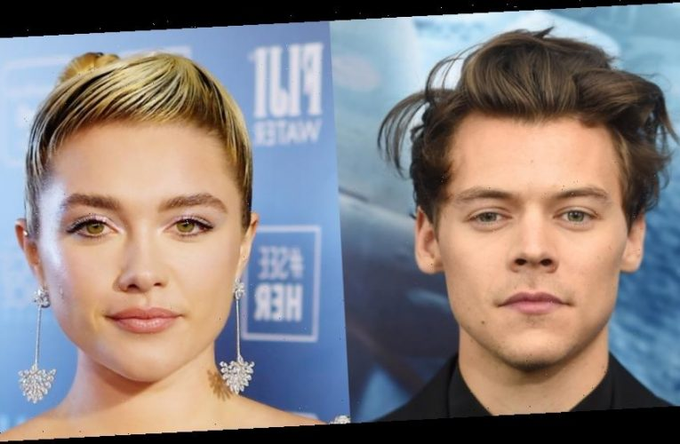 Harry Styles Joins Florence Pugh In New Movie 'Don't Worry Darling'