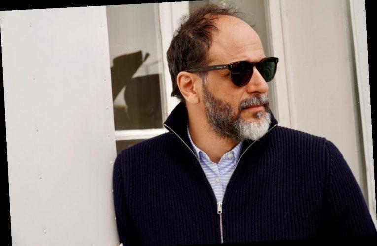 Luca Guadagnino To Chair San Sebastian Film Festival Jury