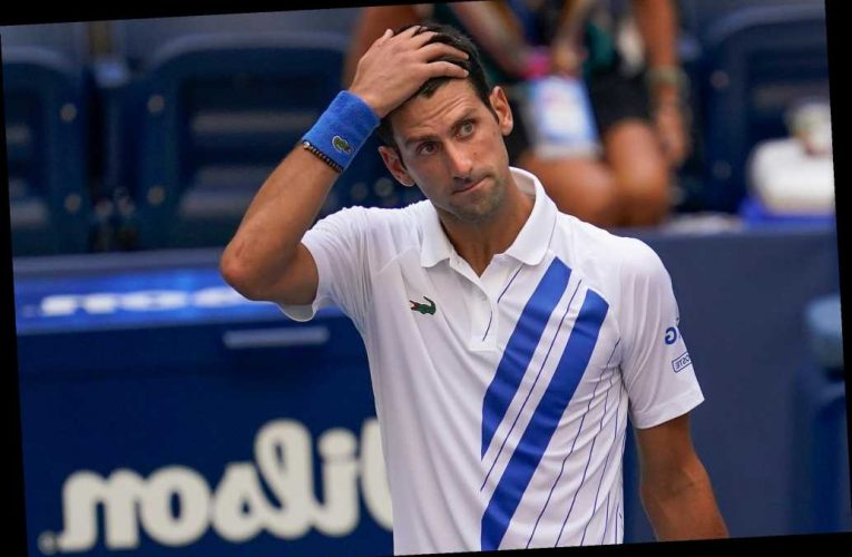 Novak Djokovic is supposed to be the GOAT?