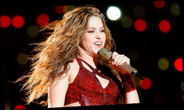 Shakira, 43, Glows On The Beach In Stunning Purple Bikini She Designed — See Pic