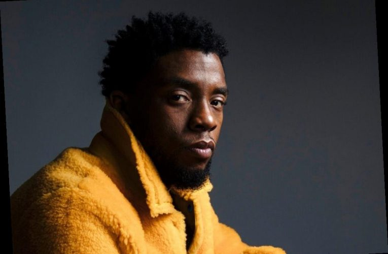 Petition calls for Chadwick Boseman statue to replace Confederate memorial in star's South Carolina hometown