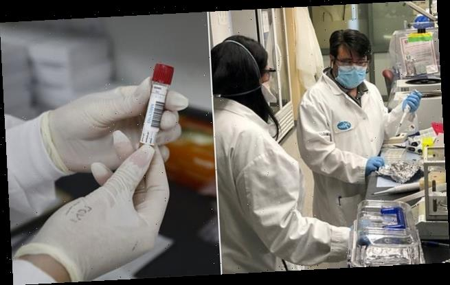 COVID-19 vaccines will be stored in secret locations to prevent theft