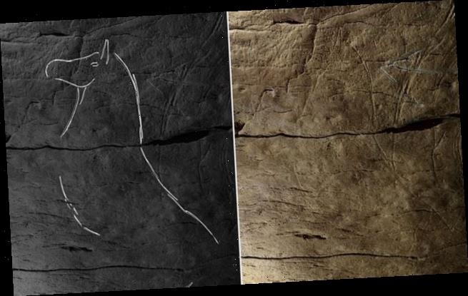 Spanish cave drawings reveal common art culture from 25,000 years ago