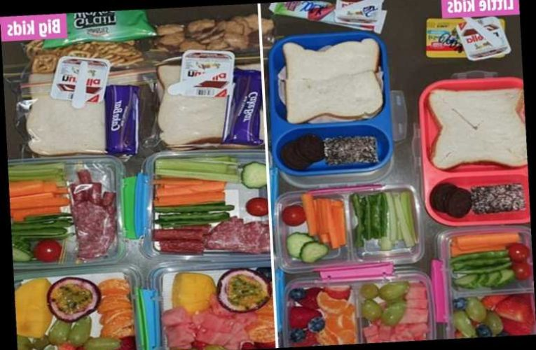 Mum-of-four sparks fierce debate with her kids' MASSIVE lunch boxes with some claiming there's way too much food